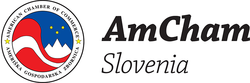 RTEmagicC_AmCham_logo1_png